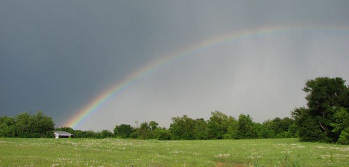 rainbow5_08.jpg